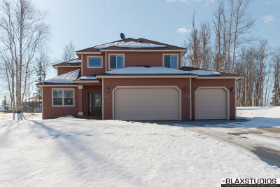 Wasilla Single Family Home For Sale: 181 W Riverdance Circle