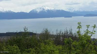 Homer AK Residential Lots & Land For Sale: $119,000