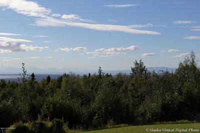 Anchorage Residential Lots & Land For Sale: 12400 Hillside Drive