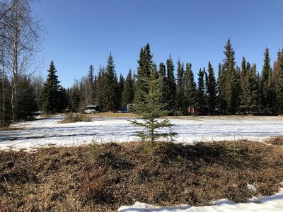 Soldotna Residential Lots & Land For Sale: 235 Jay Street