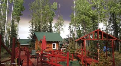 Soldotna Business Opportunity For Sale: 38410 N Salmon Circle