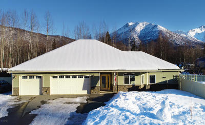 Chugiak Single Family Home For Sale: 23240 Blue Skies Circle