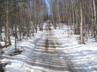 Wasilla Residential Lots & Land For Sale: 12001 Kaltag Drive