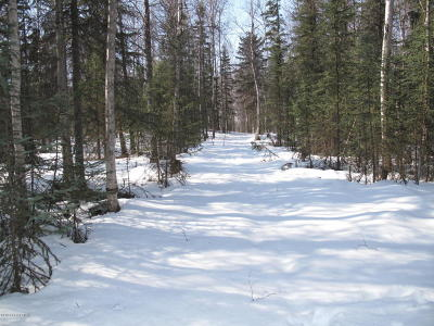 Wasilla Residential Lots & Land For Sale: NHN Horizon Drive