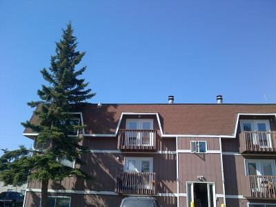 Eagle River Rental For Rent: 11539 Heritage Court #11