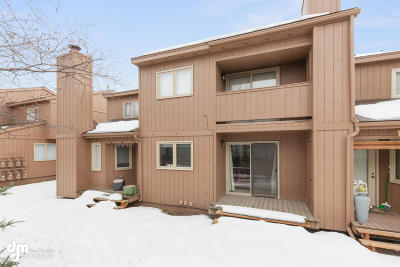 Anchorage Condo/Townhouse For Sale: 10236 Jamestown Drive #6B