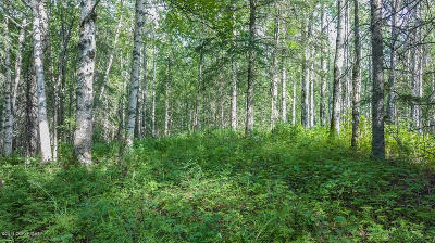 Wasilla Residential Lots & Land For Sale: 5556 Tex-Al Drive