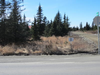 Anchor Point Residential Lots & Land For Sale: 33755 Sterling Highway