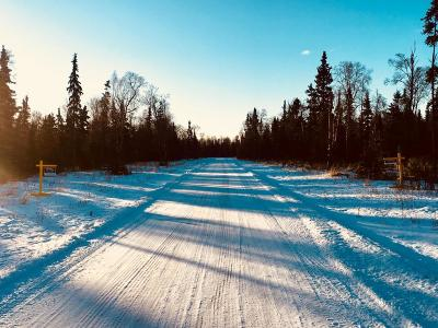 Nikiski/North Kenai Residential Lots & Land For Sale: L8 B3 Inlet Breeze Street