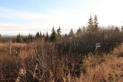 Ninilchik Residential Lots & Land For Sale: L50 Lowell Street