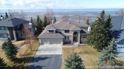 Anchorage Single Family Home For Sale: 3202 Seaport Circle