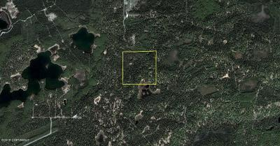 Wasilla Residential Lots & Land For Sale: Pcl C4 Pt Mackenzie Road