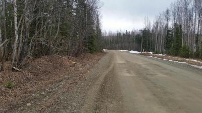 Residential Lots & Land For Sale: 11497 Ballyshannon Drive
