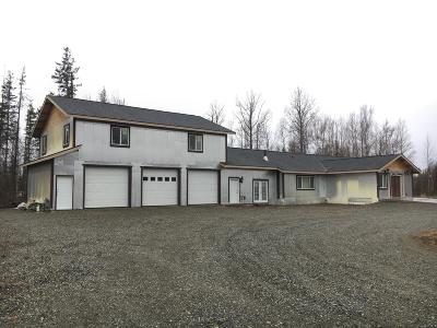 Wasilla Single Family Home For Sale: 3050 S Meander Street