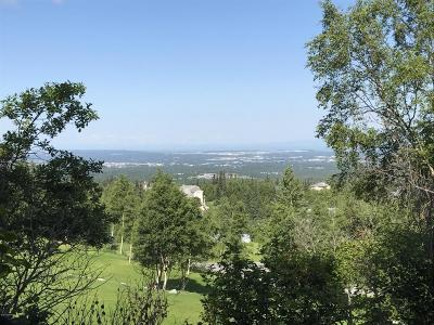 Anchorage Residential Lots & Land For Sale: 10000 Slalom Circle