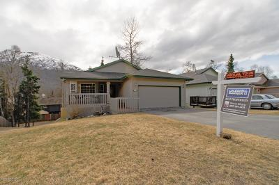 Eagle River Single Family Home For Sale: 18730 Danny Drive