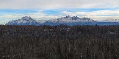 Wasilla Residential Lots & Land For Sale: 1581 Bay View Drive