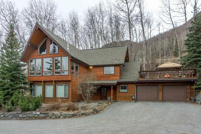 Eagle River Single Family Home For Sale: 22354 Glacier View Drive