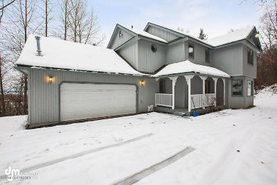 Chugiak Single Family Home For Sale: 19628 Chugach Park Drive