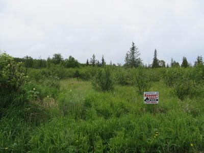 Residential Lots & Land For Sale: Tr 10 Randis Road