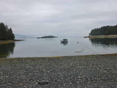 Kodiak AK Residential Lots & Land For Sale: $69,500