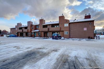 Anchorage Condo/Townhouse For Sale: 2100 Minerva Way #21A