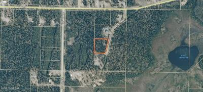 Soldotna Residential Lots & Land For Sale: 29937 Covenants Circle