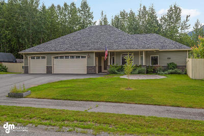 1a - Anchorage Municipality Single Family Home For Sale: 23240 Blue Skies Circle