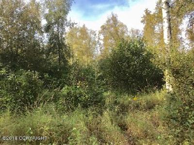 Wasilla Residential Lots & Land For Sale: 9700 Carmel Road Road