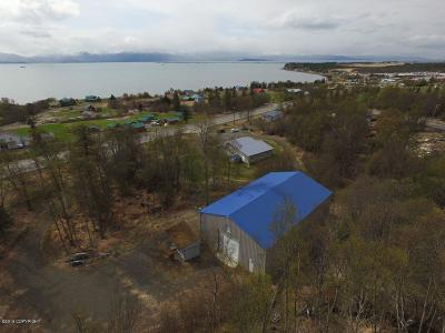 Commercial For Sale: 59522 E End Road