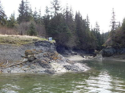 Homer, Anchor Point, Ninilchik, Seldovia, Halibut Cove Residential Lots & Land For Sale: 1-B Broken Axle