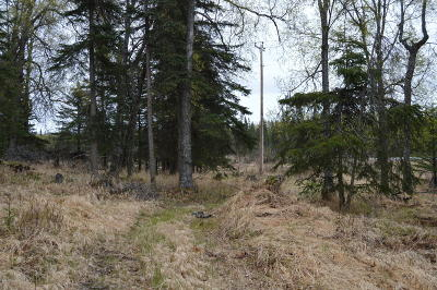 Residential Lots & Land For Sale: 63220 Sterling Highway