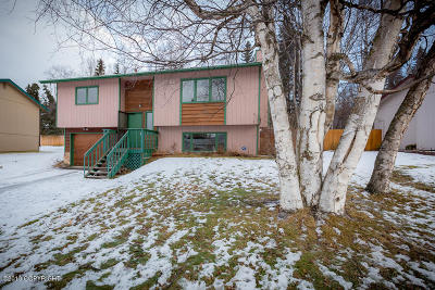 Eagle River Single Family Home For Sale: 18111 Hidden Falls Avenue