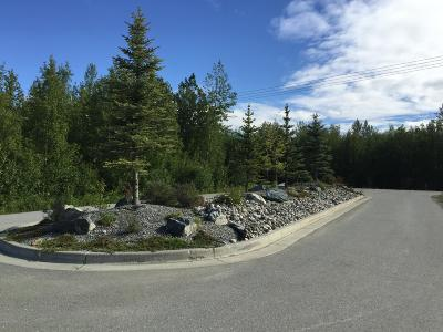 Palmer Residential Lots & Land For Sale: NHN Alpine View Drive