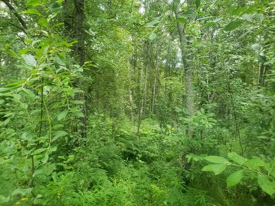 Wasilla Residential Lots & Land For Sale: 2821 Teeland Street