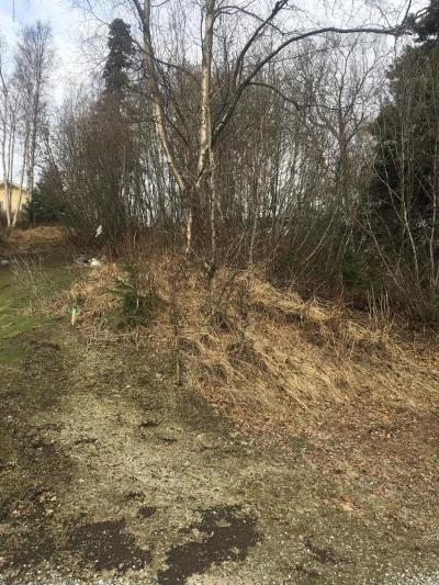 Anchorage Residential Lots & Land For Sale: L4C B1 Blackberry Street