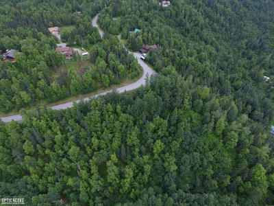 1a - Anchorage Municipality Residential Lots & Land For Sale: LT1 BLK 16 Sleepy Hollow
