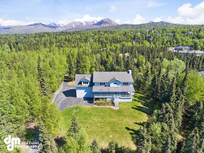 Anchorage Single Family Home For Sale: 9601 Homestead Trail
