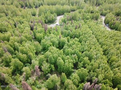 Wasilla Residential Lots & Land For Sale: 6351 Sunrise Road