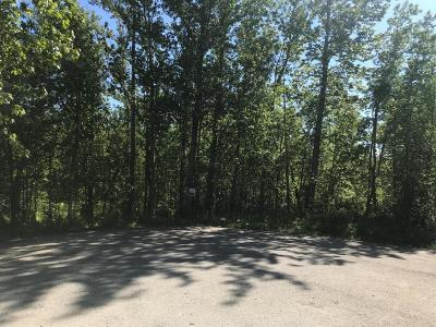 Wasilla Residential Lots & Land For Sale: 550 Pass The Buck Circle