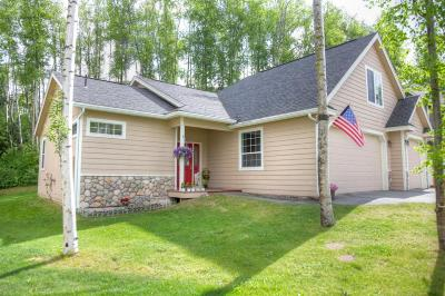 Chugiak, Eagle River Single Family Home For Sale: 16927 Ludlow Circle
