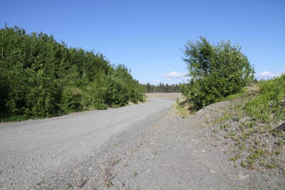 Kenai Residential Lots & Land For Sale: 47734 Ciechanski Road