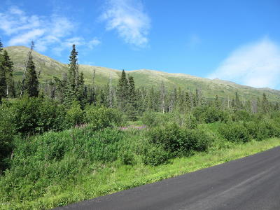 Eagle River Residential Lots & Land For Sale: L1 B1 West River Drive