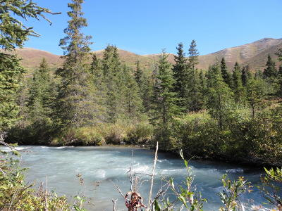 Eagle River Residential Lots & Land For Sale: Tr A West River Drive