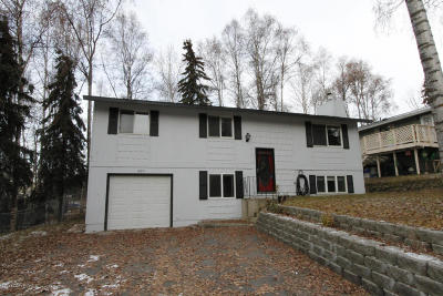 Chugiak, Eagle River Single Family Home For Sale: 16951 Baronoff Avenue