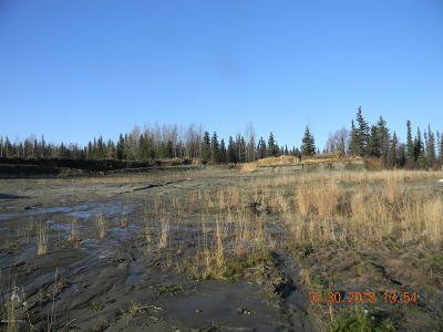 Soldotna Residential Lots & Land For Sale: Pine Street