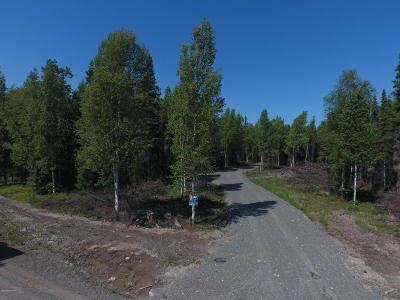 Soldotna Residential Lots & Land For Sale: 39204 Flatstone Avenue