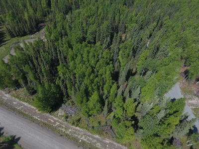Soldotna Residential Lots & Land For Sale: Flatstone Avenue