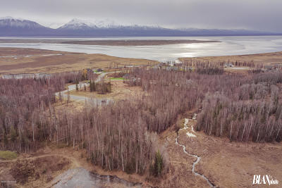 Wasilla Residential Lots & Land For Sale: 5907 Lucy Creek Circle