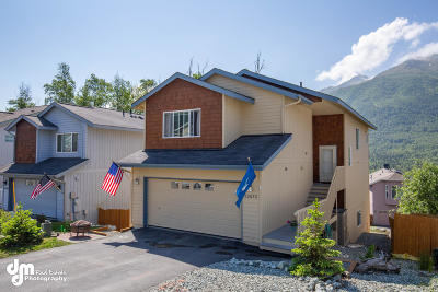 Eagle River Single Family Home For Sale: 20672 Mountain Vista Drive